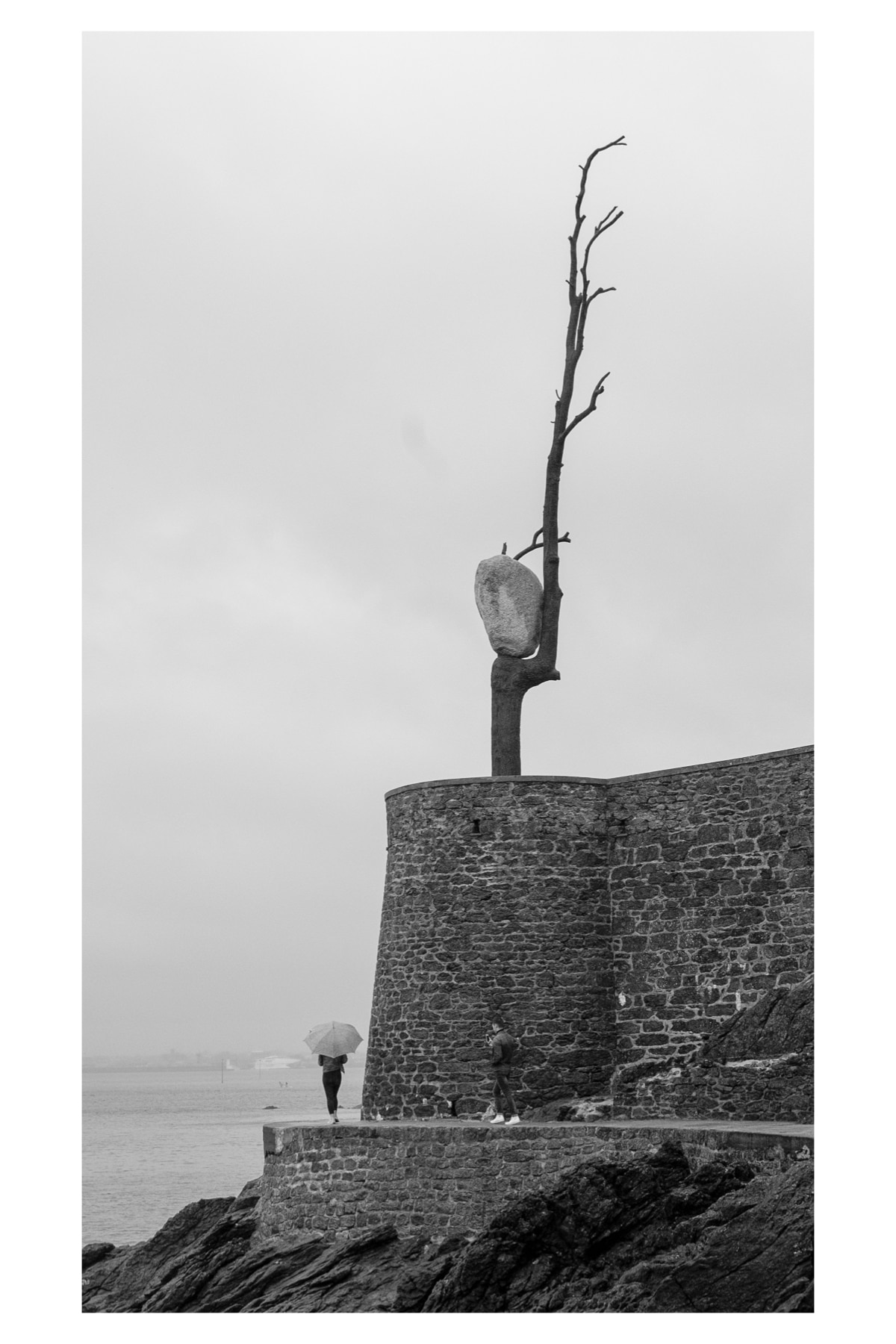Monochrome photo of a couple walking and taking photos just below the art installation of a rock on a tree.